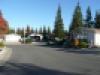 LV Street Scene 1